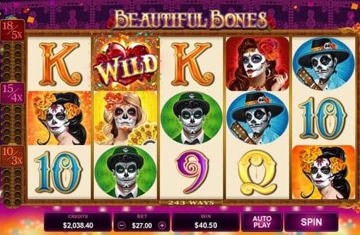 Дикий знак в игре Beautiful Bones
